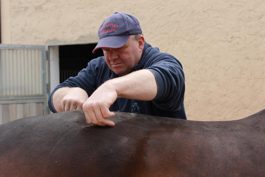 Roland bei der Arbeit